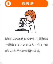 B「鏡検法」:採取した組織を染色して顕微鏡で観察することにより、ピロリ菌がいるかどうかを調べます。